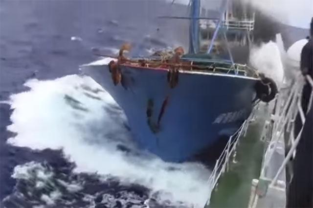 2010年9月7日の「尖閣諸島中国漁船衝突事件」で中国人船長を処分保留で釈放させたのは菅直人首相ら官邸側からの指示だった、という産経新聞の報道